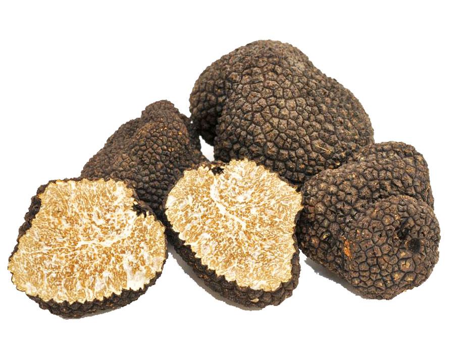 truffe-noire-vindilo